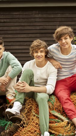 One Direction, Top music artist and bands, Liam Payne, Niall Horan, Louis Tomlinson, Harry Styles, Zayn Malik (vertical)