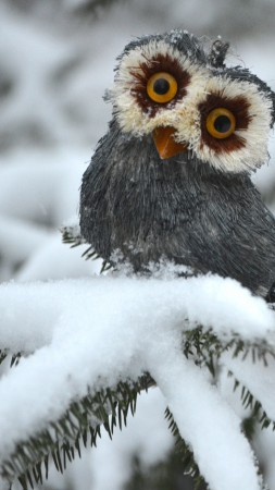 Owl, pines, snow, cute animals, funny (vertical)