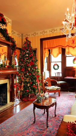Amelia Island Williams House, Fernandina Beach, Florida, New Year, fireplace, decor, fir-tree, light (vertical)