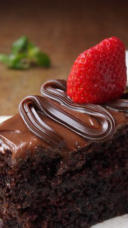 Cake, chocolate, strawberry (vertical)