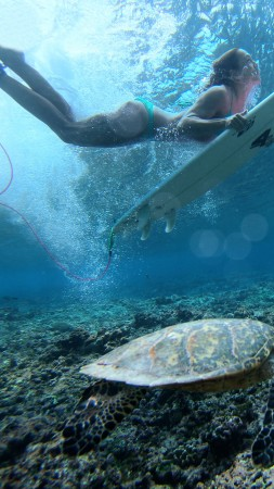 Surfing, girl, duck dive, sea, underwater (vertical)