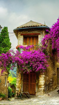 Provence, France, Tourism, Travel (vertical)