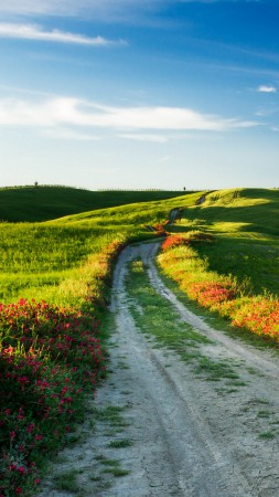 Tuscany, 4k, HD wallpaper, Italy, Meadows, road, wildflowers, sky (vertical)