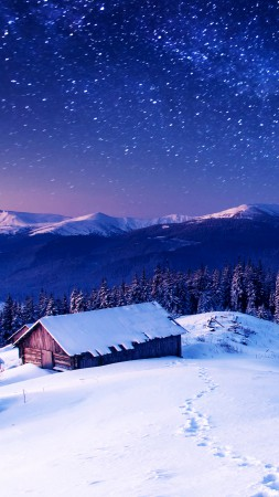 Mountains, 5k, 4k wallpaper, 8k, night, stars, trees, sky, snow (vertical)