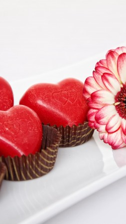 Valentine's Day, February 14, flowers, chrysanthemum, chocolate, candy, hearts, love (vertical)
