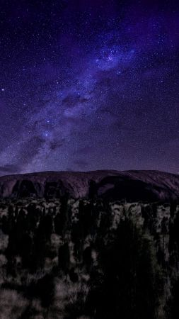 Ayers, mountains, night, stars, trees