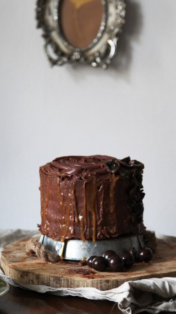 cake, chocolate, cherries, raisins (vertical)