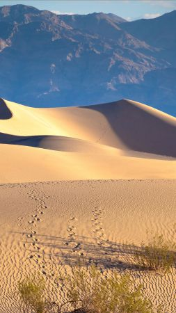 Death valley, 5k, 4k wallpaper, USA, desert, sand, mountains (vertical)