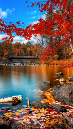 autumn forest, 4k, HD wallpaper, leaves, trees, lake, rocks, beach, bridge, sky, clouds (vertical)