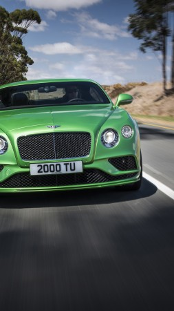 bentley continental gt speed, coupe, luxery, green. (vertical)