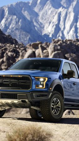 Ford F-150 Raptor, 2015 Detroit Auto Show, Best Cars 2015 (vertical)