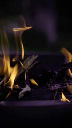 Fire, flame, macro, bonfire (vertical)