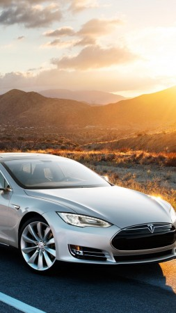 Tesla model x, electric, coupe, luxery, sunset, grey. (vertical)