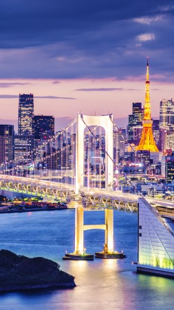 Tokyo Bay, Japan, bridge, night, travel, tourism (vertical)