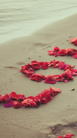 Shore, 5k, 4k wallpaper, 8k, beach, petals, love, sand (vertical)