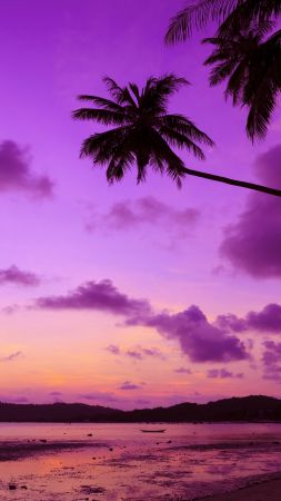 Thailand, 4k, 5k wallpaper, beach, palms, shore, sunset, travel, tourism (vertical)