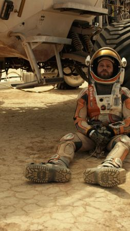 The Martian, Best Movies of 2015, movie, Matt Damon (vertical)