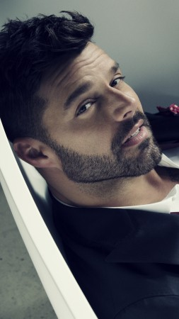 Ricky Martin, Top music artist and bands, singer (vertical)