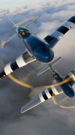 North American P-51 Mustang, fighter, US Army (vertical)