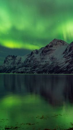 Aurora Borealis, 5k, 4k wallpaper, Abisko, Sweden, tourism, travel, green, lake, National Park (vertical)