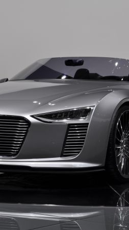 Audi e-tron Spyder, electric cars, silver, convertible (vertical)