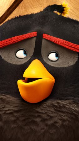 Angry Birds Movie, bomb, Best Animation Movies of 2016