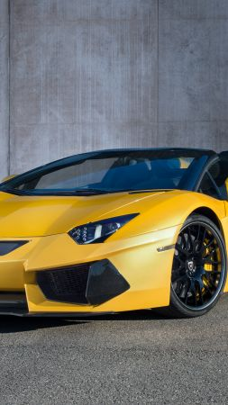 Lamborghini Aventador, roadster, yellow, limited, special edition (vertical)