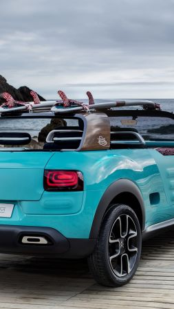 Citroen Cactus M, hybrid, Citroen, city car, crossover, 2015 car, concept, supercar, luxury cars, cars of 2016 (vertical)