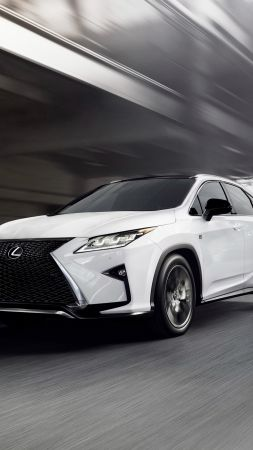 Lexus RX 350, supercar, white, luxury cars, test drive (vertical)