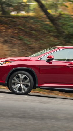 Lexus RX 450, supercar, luxury cars, test drive (vertical)
