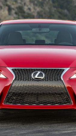 Lexus is200 T supercar, luxury cars, red, test drive (vertical)