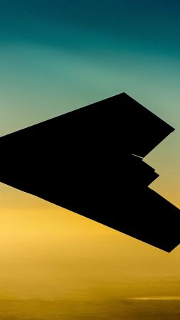 Taranis, Raptor, BAE Systems, British Army, UAV, stealth technology, stealth, UCAV (vertical)