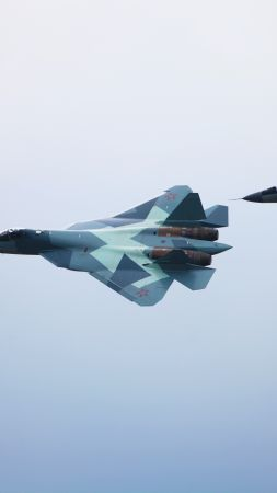 Sukhoi T-50, Mig-29m2, Russian army, red star, fighter aircraft, air force (vertical)