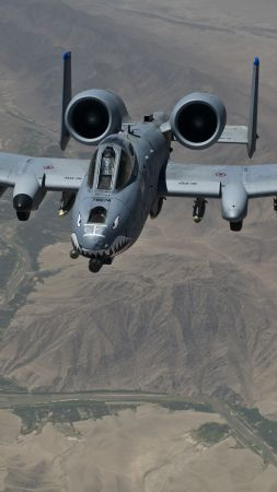 A-10 Thunderbolt II, US Army, U.S. Air Force, aircraft (vertical)