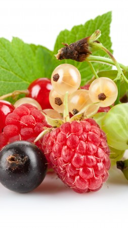 berries, gooseberries, currants, raspberries, blueberries