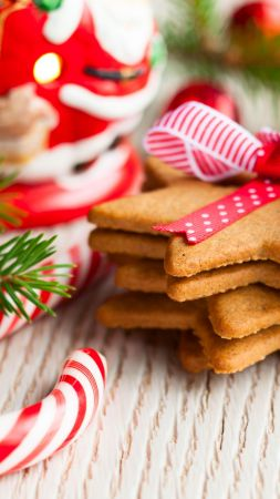 Christmas cookies, New year, decirations, branch (vertical)