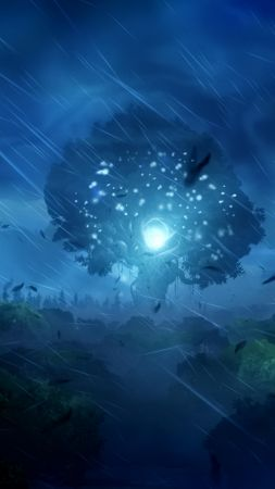 Ori and the Blind Forest, Best Game, game, arcade, fairytale, PC, Xbox One