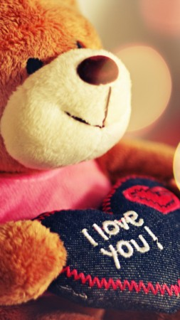 Valentine's Day, Bear, toys, love (vertical)