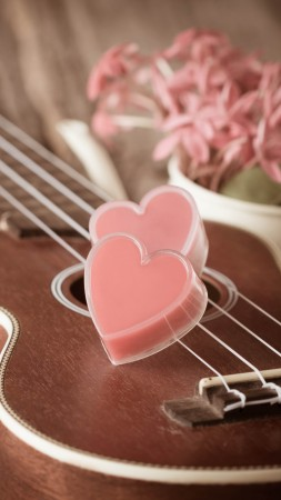Valentine's Day, heart, guitar, romantic, flowers, love (vertical)