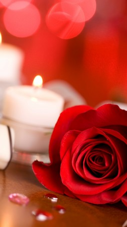 Valentine's Day, rose, candle, ribbon, romantic, love