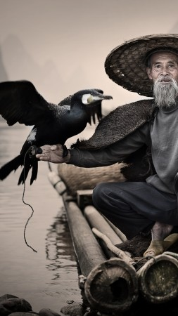 Cormorant, Li-River, Xingping, China, fishing village, bird, National Geographic Traveler Photo Contest (vertical)