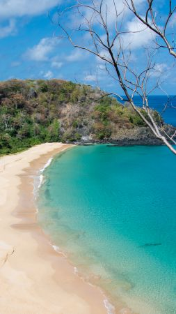 Baia do Sancho, Fernando de Noronha, Brazil, Best beaches of 2016, Travellers Choice Awards 2016 (vertical)