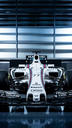 Williams FW38, Formula 1, testing, LIVE from Barcelona, F1 (vertical)