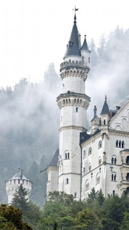 Neuschwanstein castle, Germany, forest, trees, smoke (vertical)