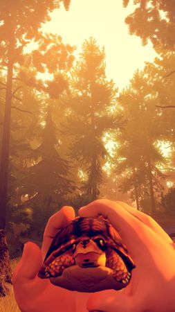 Firewatch, Best Games, game, quest, horror, PC, PS4 (vertical)