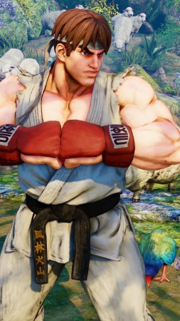 Street Fighter 5, RYU, Best Games, fantasy, PC, PS4 (vertical)