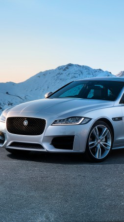 Jaguar XF R-Sport, roadster (vertical)