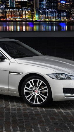 Jaguar XF Portfolio, sedan, grey (vertical)