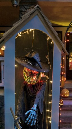 Halloween, All Hallows' Eve, All Saints' Eve, pumpkin, fear, cap, yellow, lights, house, porch, decoration (vertical)