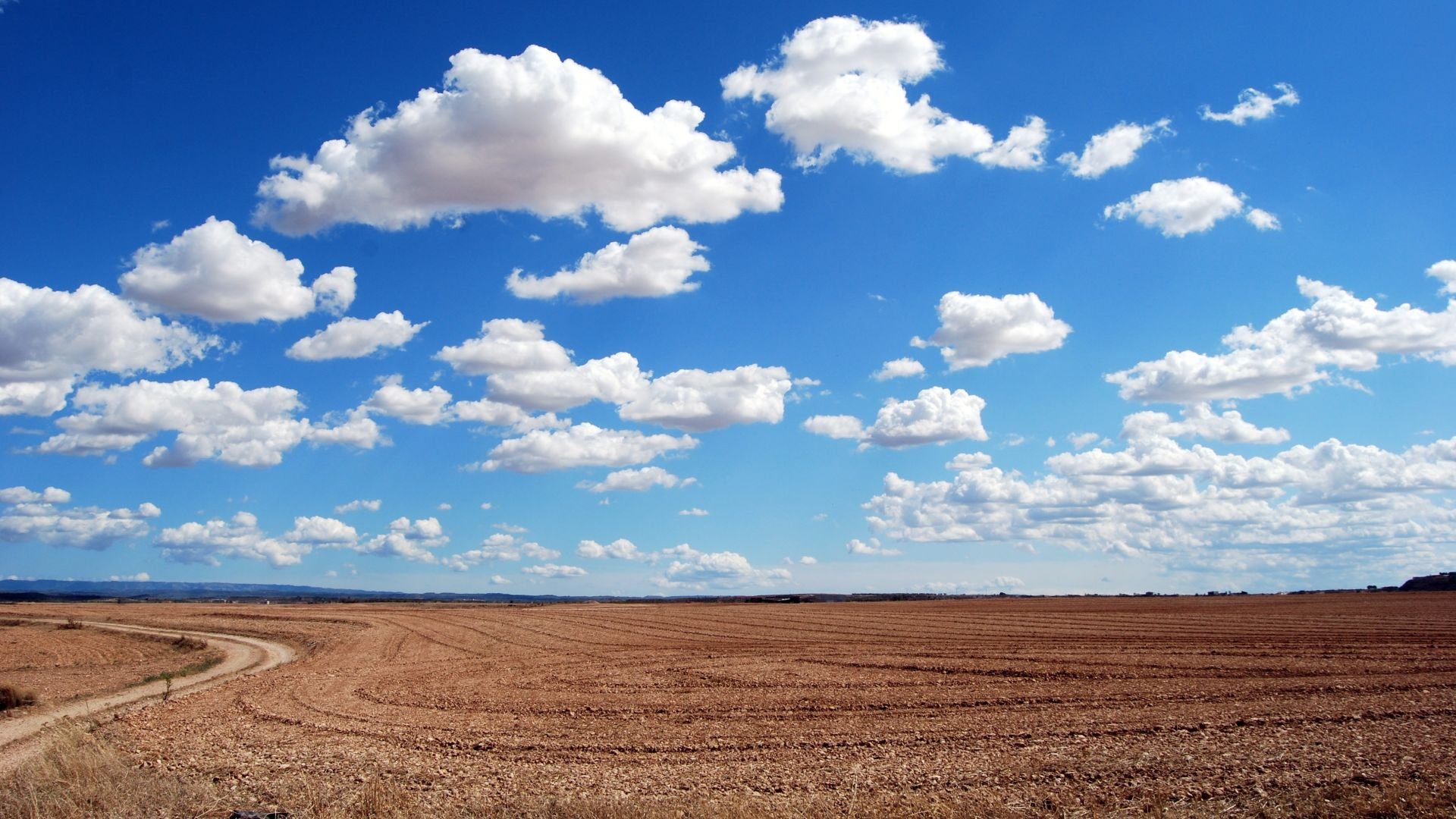 clouds, sky, field, 4k (horizontal)